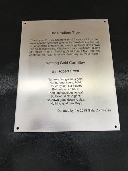 bradford tree